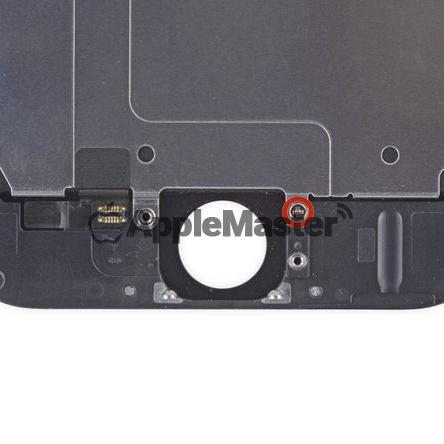 Удаление последнего винта защитной пластины iPhone 6