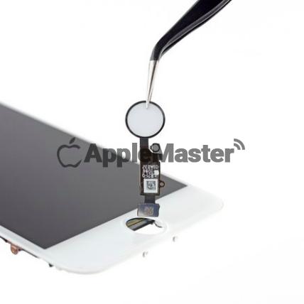 Кнопка Хоум iPhone 8
