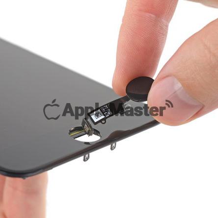Установка кнопки хоум iPhone 7