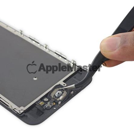Демонтаж кнопки Хоум Айфон 6S